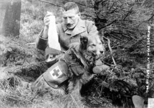 Autunno 1914, fronte franco belga: un soldato inglese (il ten. Col. Richardson?) preleva delle bende dalla sacca portata dal cane del soccorso feriti